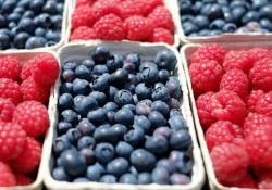 God leverandør af frugt og grønt til restauranter