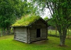 Gør livet lidt grønnere med grønne tage fra Nykilde